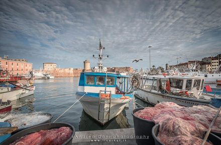 Porto di Livorno Ph: Andrea Dani Photography