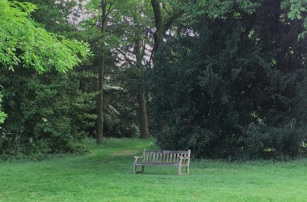 Le panchine di Kew Gardens