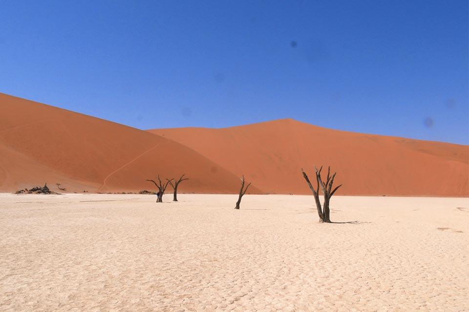 Le antiche dune di Sossusvlei, il pan e gli alberi mummificati